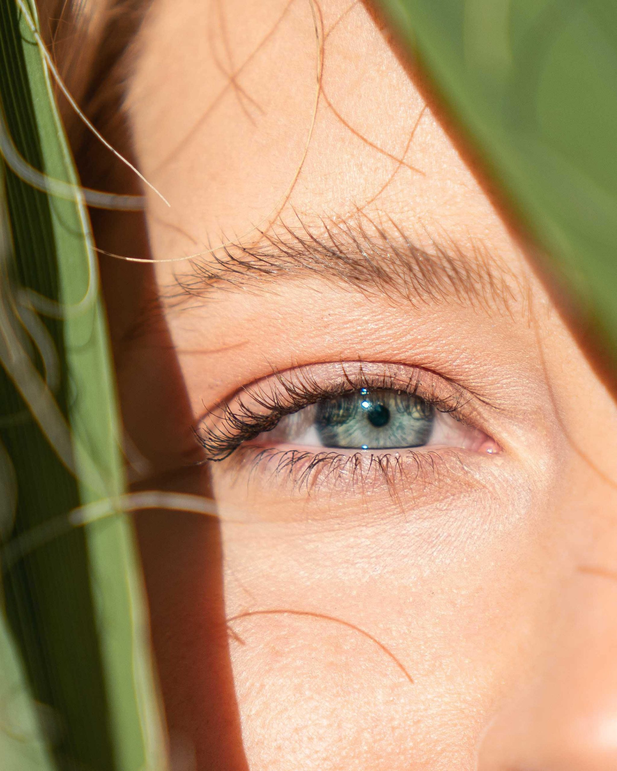 Which Contact Lenses Are Right For Me
